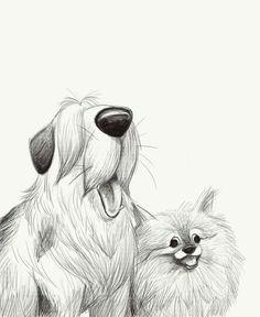 sketches dogsofinstaworld dogs sheepdog pomeranian