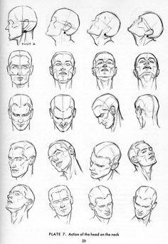 andrew loomis artwork male head drawing tutorial drawing faces neck drawing drawing men face