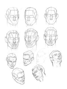 human skull anatomy artist human head anatomy drawing at getdrawings