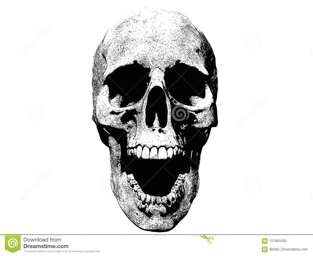 skull screaming isolated in white background