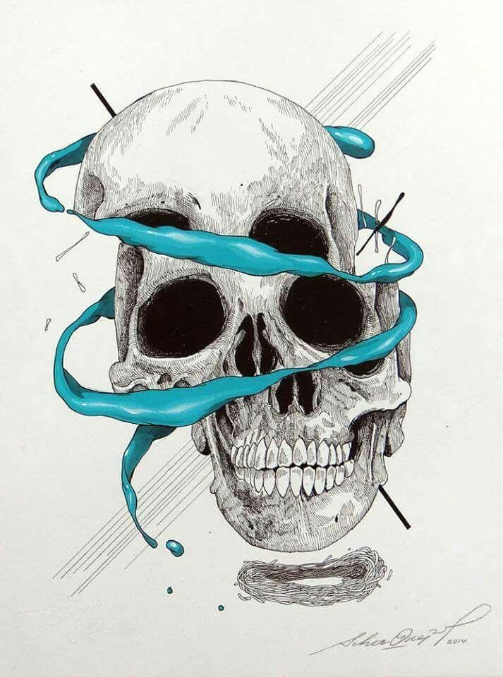 craneo 11 skull anatomy skull illustration horror artwork skull island skull design