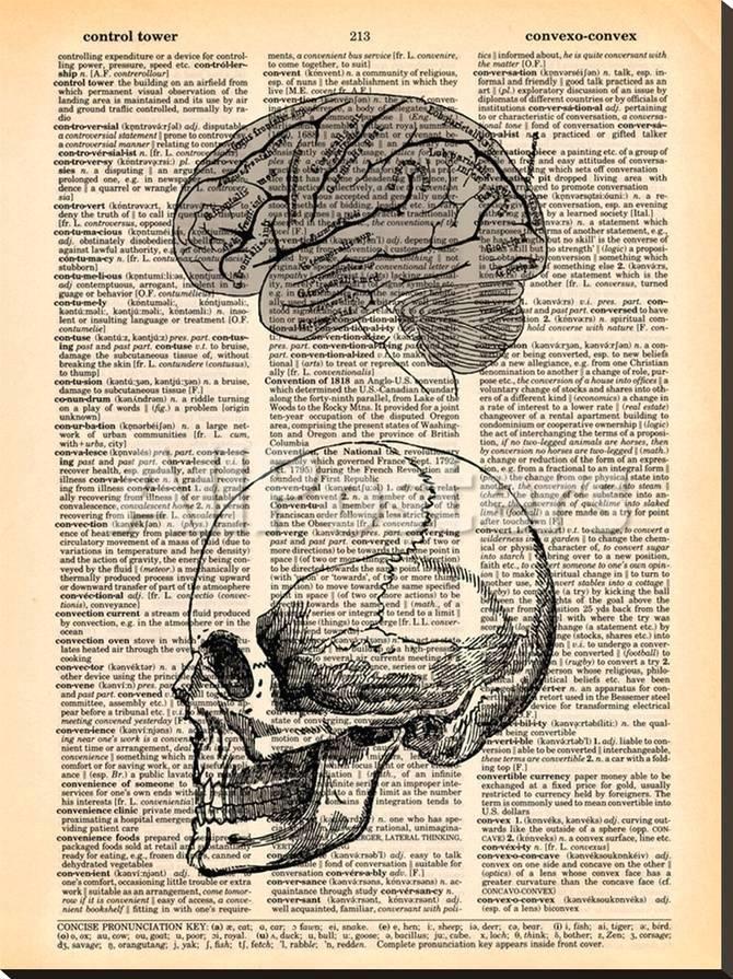 book dictionary art skull brain a g 15084525 0 jpg