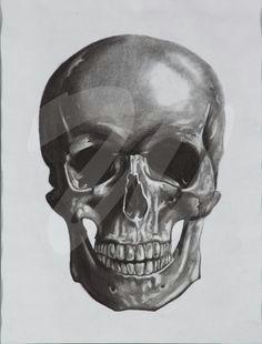 brady webb skull category drawing prints charcoal on paper