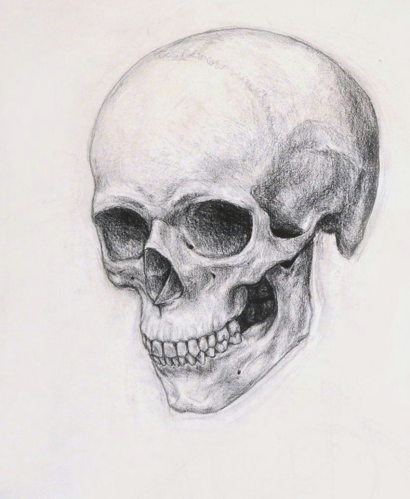 realistic skull drawing realistic skull drawing how to draw a skull online drawing lessons