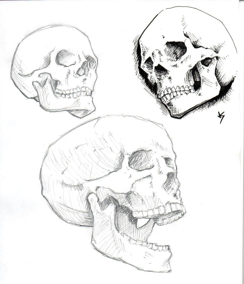 skull studies by od1nswrath