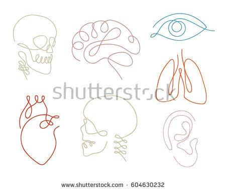 Skull Drawing Minimalist One Line Human organs Set Design Silhouette Logo Design Hand Drawn
