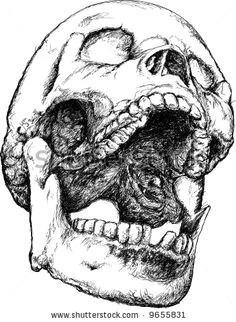 screaming skull skull open mouth ink pen drawings skull drawings crane skull