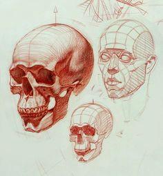 https s media cache ak0 pinimg com skeleton head drawingsimple skull drawingdrawing