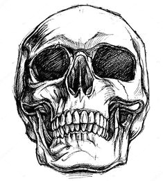 desenhando com lapis desenho para tatoo caveiras