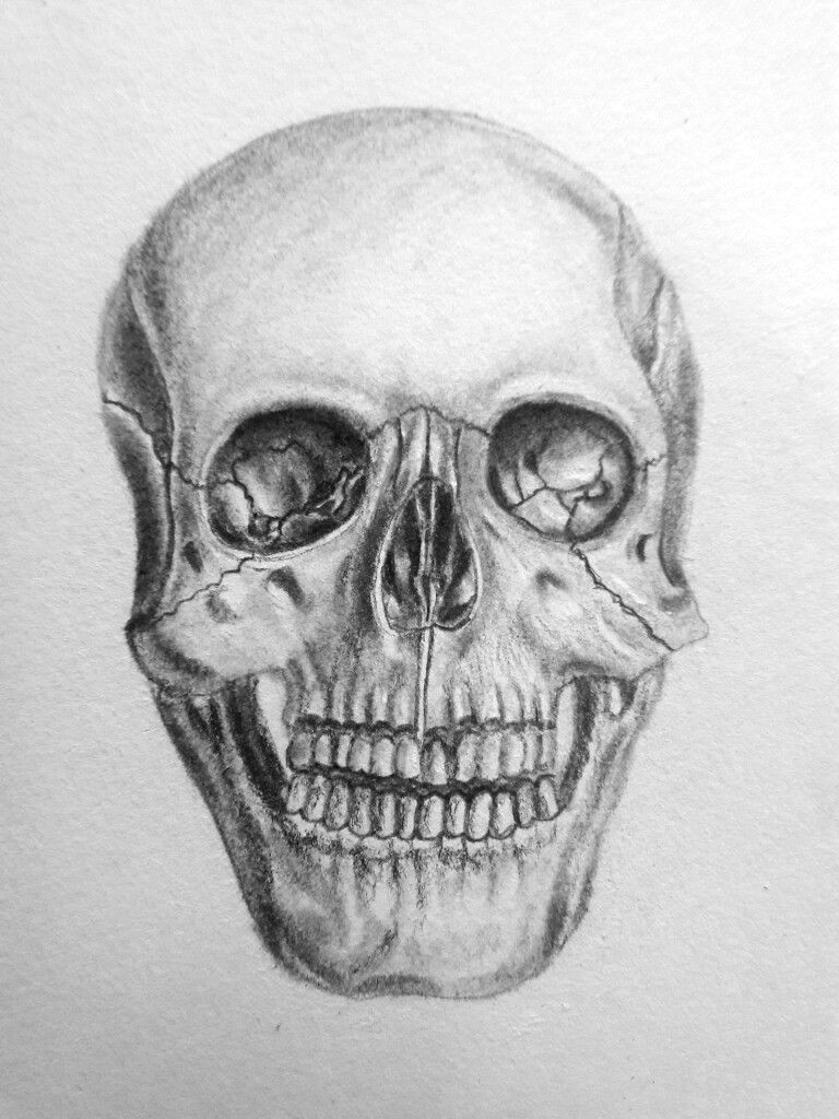 please give credit as this is my own drawing pinterest naomiokayyy skull drawing
