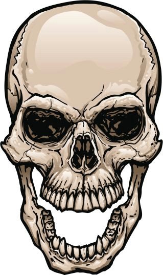 165628919 skull with wide open mouth gettyimag by johnhiggins5