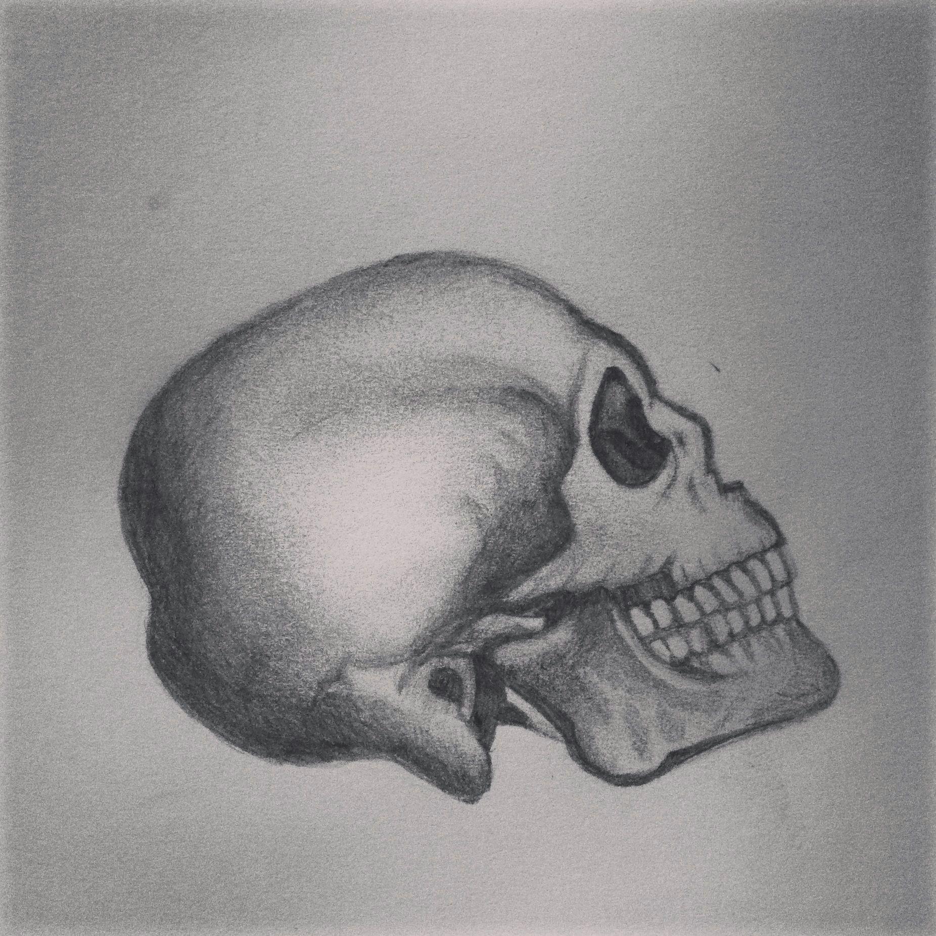 skull head pencil shading drawing sketch tattoo idea design art