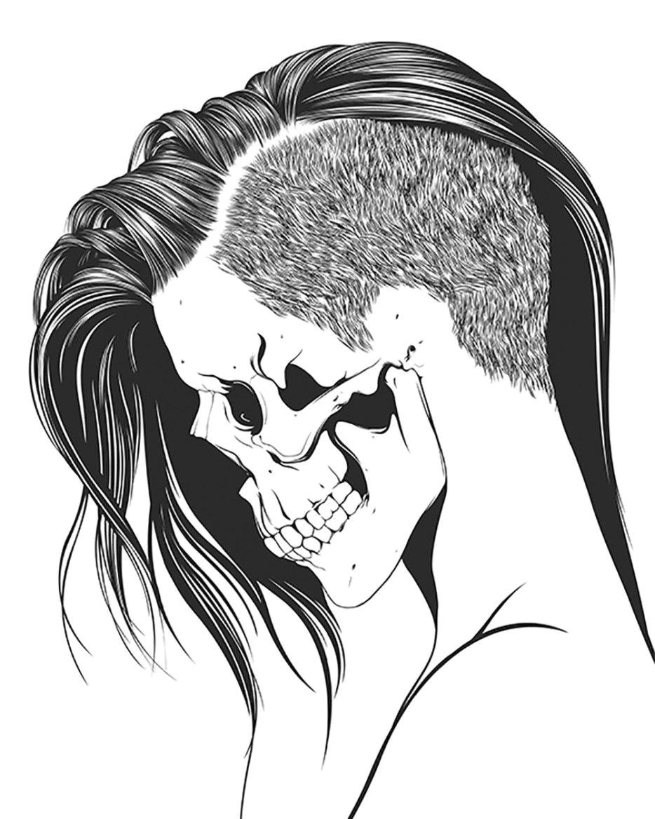 skeletons skull face crane animal skull drawing animal skulls skull illustration