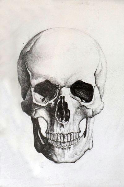 Skulls Drawing In Pencil Skull Sketch Tattoo Skull Sketch Drawings Skull Art