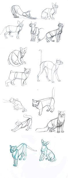 Speed Drawing Of A Cat Die 79 Besten Bilder Von Drawing Cats In 2019 Draw Animals