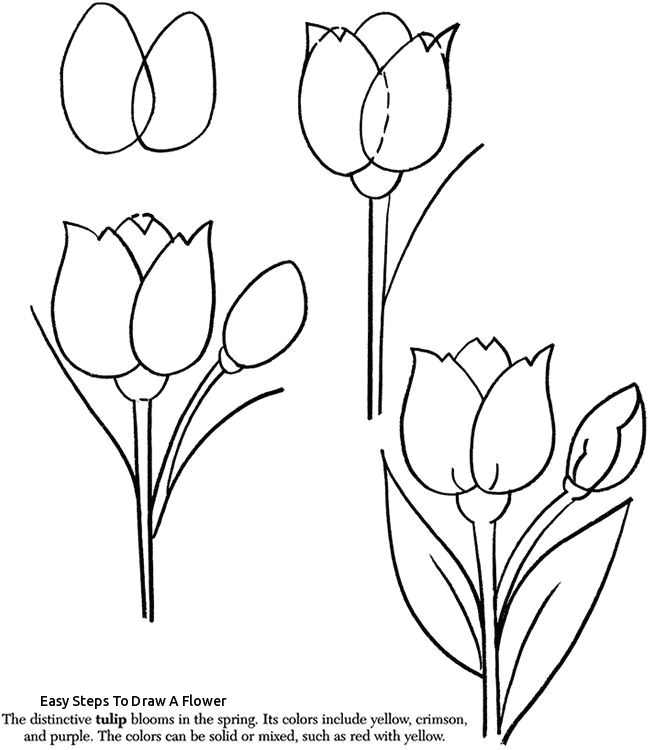 easy steps to draw a flower rose flower drawing step step at getdrawings
