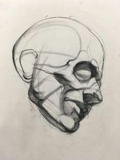 image may contain drawing