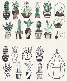 succulent drawings succulent tattoo cactus tattoo cactus drawing plant drawing drawings