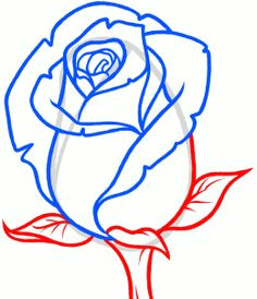 how to draw a rose bud rose bud step by step flowers