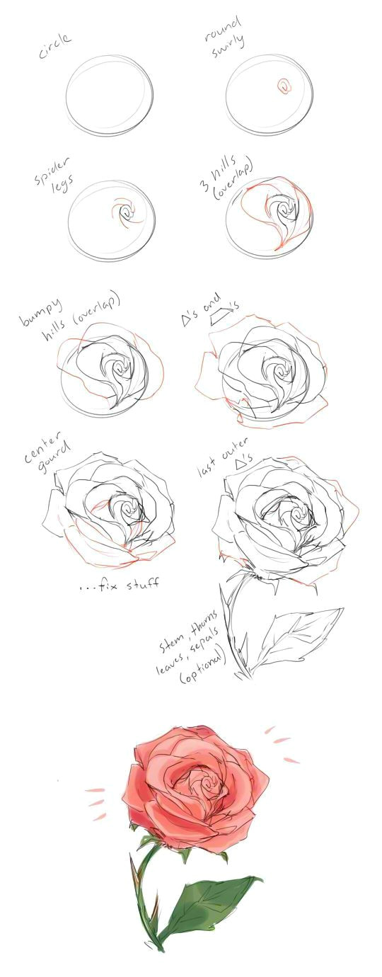 Tutorial for Drawing A Rose How to Draw A Rose Tutorial by Cherrimut On Tumblr Art Drawings