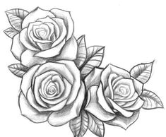 roses rose drawing tattoo s tattoo tattoo quotes tattoo drawings art drawings