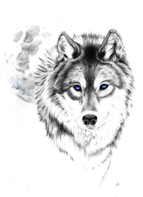 wolf tattoo tumblr