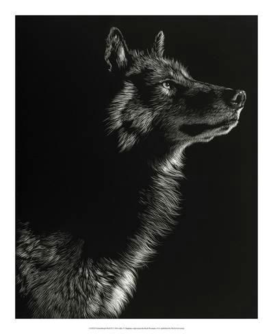 giclee print scratchboard wolf ii by julie chapman 22x18in