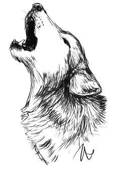 wolf drawings animal drawings pencil drawings art drawings wildlife art wolf