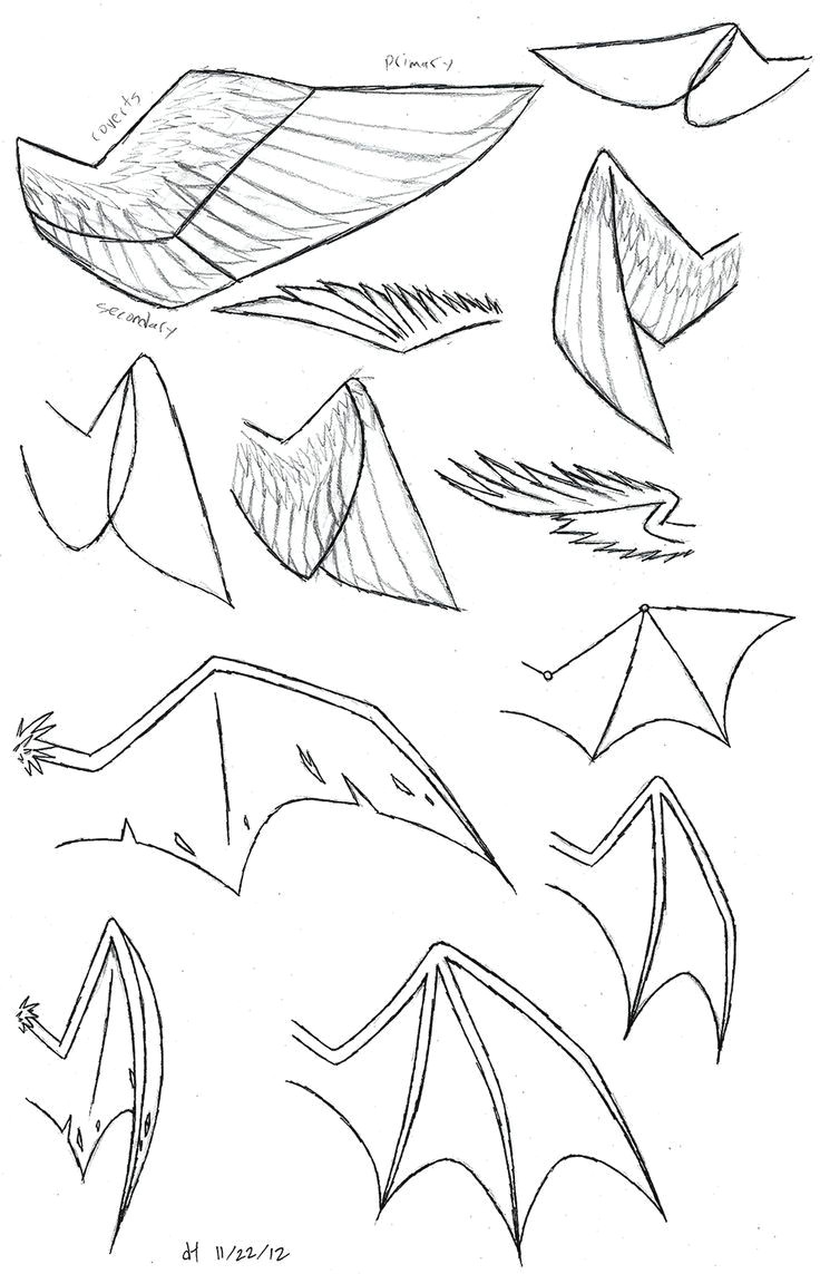 how to draw anime wolf ears and tail google search more