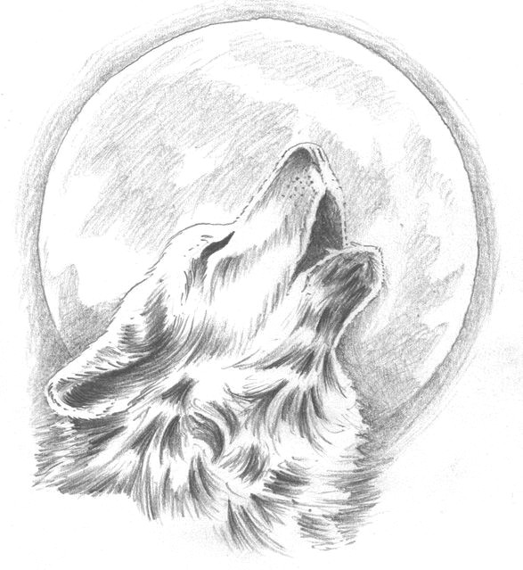 howling wolf tattoo change the moon to our dream catcher behind the wolf yes that would be so pretty