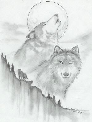 sketches of wolf cool drawings of wolves wolf sketch by vassago
