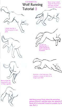 wolf run tutorial