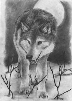 10 cool wolf drawings for inspiration ideastand cool wolf drawings amazing drawings