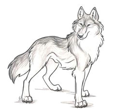 commission rugan cute animal drawingscool drawingswolf