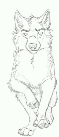 Wolf Drawing In Cartoon 217 Best Cartoon Wolf Images Animal Drawings Sketches Of Animals