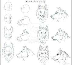 how to draw wolves how to draw a wolf by skiba613 wolf drawing easy