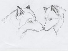 easy drawing of animals wolf sketch by greywolves redroses easy animal drawings cute