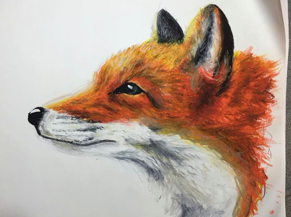 oil pastels fox drawing