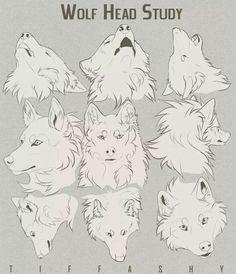 wolf drawings wolf head drawing anime wolf