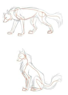wolf poses of stand and sit