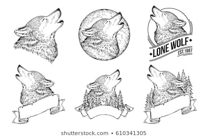 set vector illustrations of a howling wolves with ribbon engraving print for t