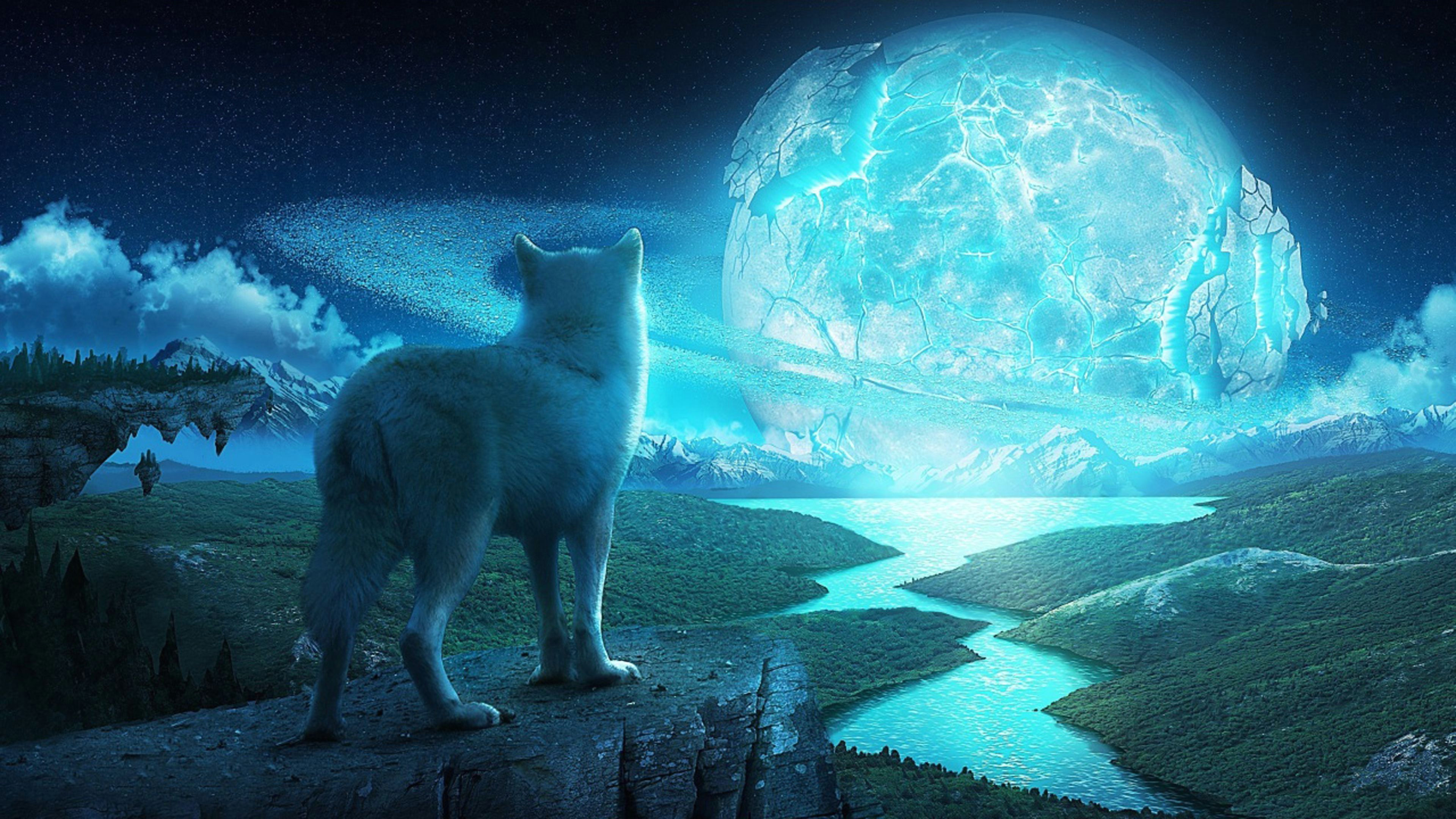 wolf in a fantasy world ultra hd 4k wallpaper