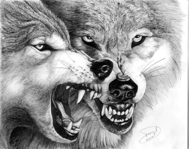 hungry wolfs