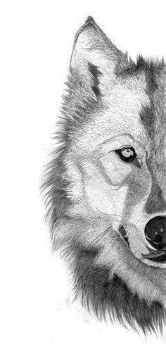 wolf tattoos liebe zeichnungen