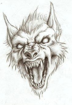 werewolf head drawing not my art wolf head drawing dragon head drawing