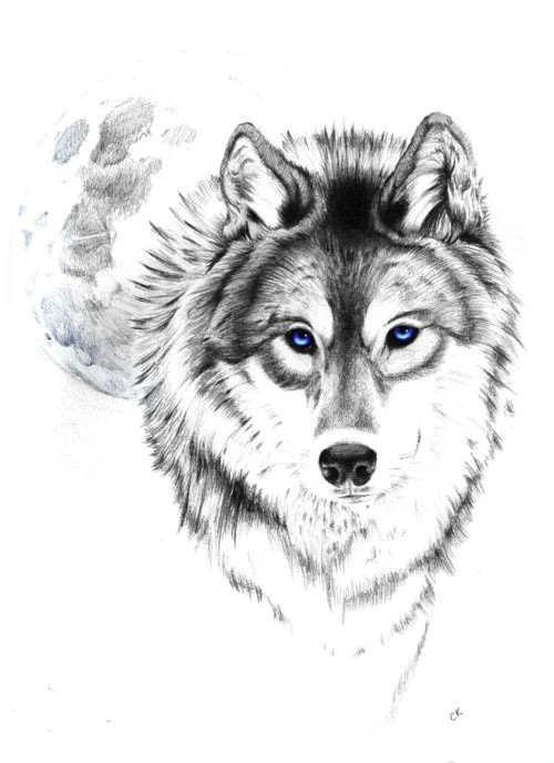 wolf tattoo tumblr love this wolf and moon
