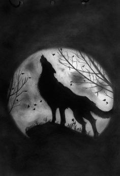 wolf howling at the moon coloring pages how to draw wolf and moon
