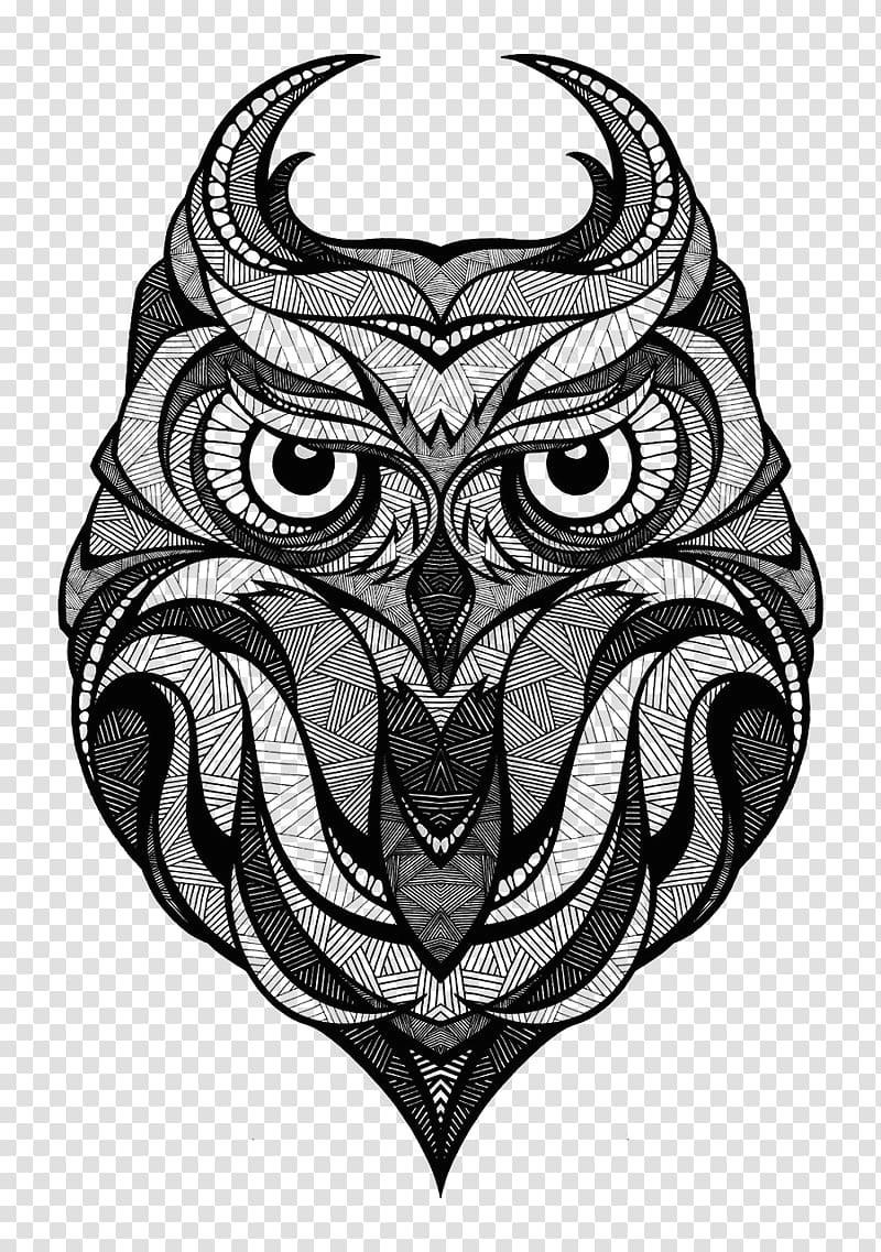 owl drawing bird art inspired by the green skateboards owl jpg