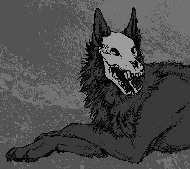 Anime Drawings Of Wolves Wolf Skeleton Anime Wolves Furry Art Monster Art Anime