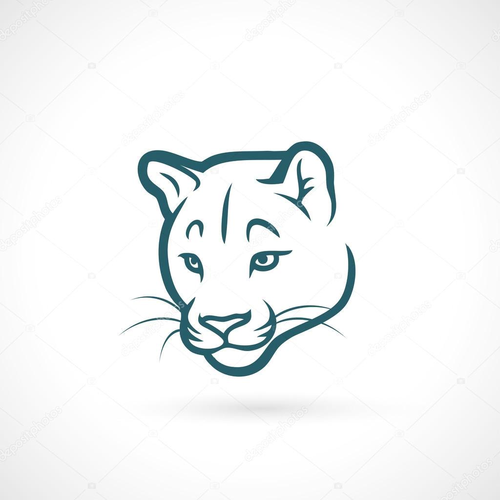 depositphotos 46549257 stock illustration cougar jpg
